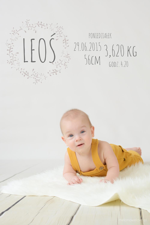 LeośLeoś-18z inf2-0121